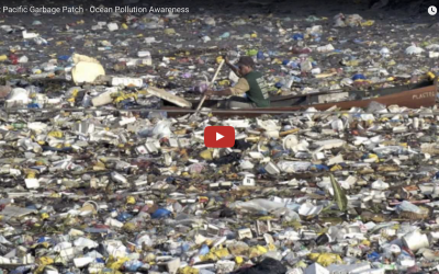 Great Pacific Garbage Patch – Ocean Pollution Awareness